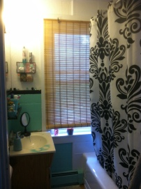 crafty bathroom1